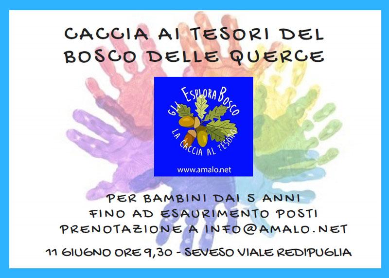 Evento Amalo 2017