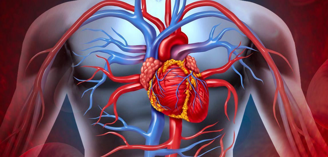 Danni covid cuore